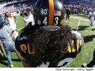 Troy Polamalu's Hair is Insured